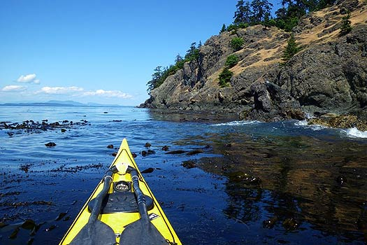 Kayaking along the west side of San Juan Island.