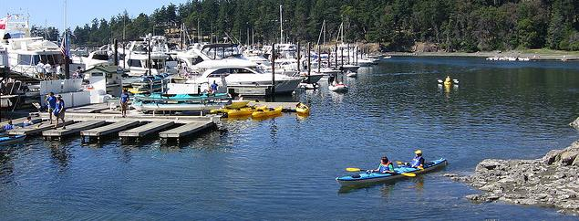 Sea Kayakers in nearby Roche Harbor
