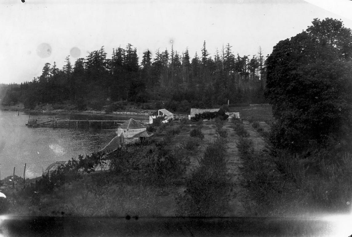 English Camp orchard. Photo courtesy of Roche Harbor