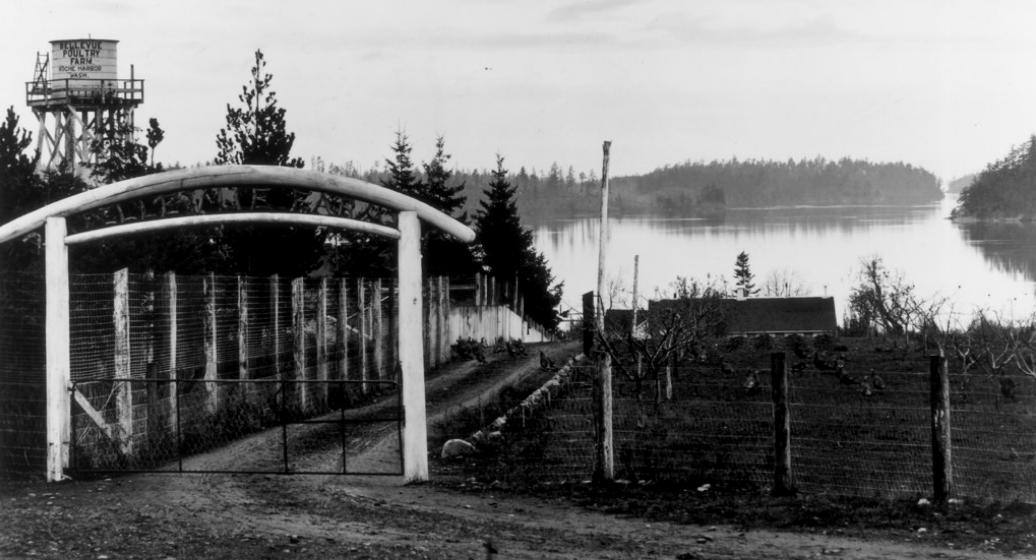 Bellevue Poultry Farm, Roche Harbor