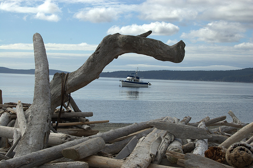 Driftwood and a power boat anchored Just off of Spencer Spit State Park, Lopez Island.