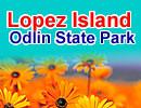 Lopez Island's Shark Reef Sanctuary