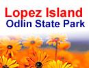 Lopez Island Odlin State Park