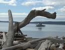 Lopez Island's Spencer Spit