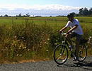 Bicycling On Lopez Island